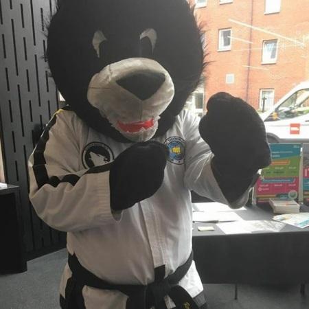 taekwondo mascot