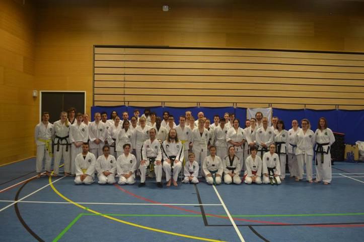 The taekwondo masters